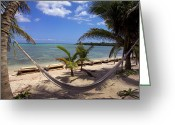 Atlantic Beaches Greeting Cards - A hammock between palm Greeting Card by Raul Touzon