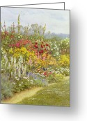 Hollyhock Greeting Cards - A Herbaceous Border Greeting Card by Helen Allingham