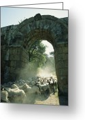 Rock Groups Greeting Cards - A Herd Of Sheep Moving Through The West Greeting Card by O. Louis Mazzatenta