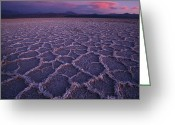 Honeycomb Greeting Cards - A Honeycomb Pattern On The Salar De Greeting Card by Joel Sartore