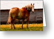 Imac Greeting Cards - A Horse of Course Greeting Card by Stephen Lawrence Mitchell