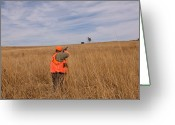 Mature Adult Greeting Cards - A Hunter Shoots A Ring Necked Pheasant Greeting Card by Joel Sartore