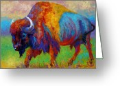 Bull Greeting Cards - A Journey Still Unknown - Bison Greeting Card by Marion Rose