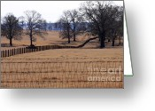 Fence Row Greeting Cards - A Lined Pasture Greeting Card by Joy Tudor