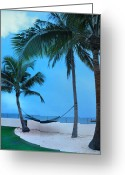 Key West Island Greeting Cards - A Little Bit of Paradise Greeting Card by Bill Cannon