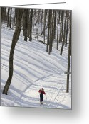 Image Type Photo Greeting Cards - A Little Boy Country Skiing On A Trail Greeting Card by Skip Brown