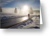 Winter Road Greeting Cards - A lonely winter Greeting Card by Gabriela Insuratelu