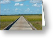 Bonnes Eyes Fine Art Photography Greeting Cards - A Long Walk  Greeting Card by Bonnes Eyes Fine Art Photography