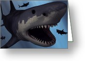 Sharp Teeth Greeting Cards - A Megalodon Shark From The Cenozoic Era Greeting Card by Mark Stevenson