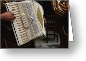 Entertainers Greeting Cards - A Mexican Musician Playing An Accordion Greeting Card by Gina Martin