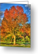 Brown Leaf Greeting Cards - A Michigan Fall-2 Greeting Card by Robert Pearson