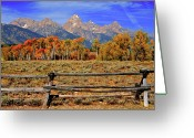 Teton National Park Greeting Cards - A Moment In Wyoming In Autumn Greeting Card by Jeff R Clow