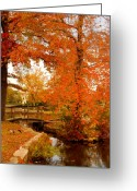 Foot Bridge Greeting Cards - A Morning In Autumn - Lake Carasaljo Greeting Card by Angie McKenzie