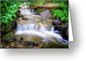 Shady Greeting Cards - A mountain stream pleases me more than the sea Greeting Card by Utah Images