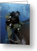 Special Delivery Greeting Cards - A Navy Seal Climbs Aboard A Seal Greeting Card by Stocktrek Images