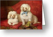 Working Dogs Greeting Cards - A Pair of Poodles Greeting Card by English School