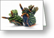Image Type Photo Greeting Cards - A Pair Of Toxic Nembrotha Kubaryana Greeting Card by David Doubilet
