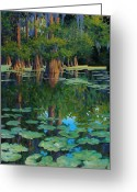 Louisiana Greeting Cards - A Patch of Blue Greeting Card by Kevin Lawrence Leveque
