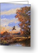 Sunset Jewelry Greeting Cards - A Pheasent at Sundown Greeting Card by Douglas Trowbridge