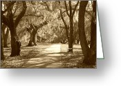 Contemplation Digital Art Greeting Cards - A Place for Contemplation in sepia Greeting Card by Suzanne Gaff