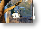 Back Porch Greeting Cards - A Place to Perch Greeting Card by Nikki Marie Smith