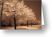 Stillness Greeting Cards - A Quiet Snowy Night Greeting Card by Jackie Reitsma