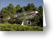 Curtiss Kittyhawk P-40 Greeting Cards - A Replica Of The Curtiss P-40e Warhawk Greeting Card by Stocktrek Images