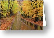 Indiana Autumn Greeting Cards - A Road Not Taken Greeting Card by William Howard