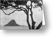 Pacific Islands Greeting Cards - A Rock Formation In The Pacific Ocean, Oahu, Hawaii Greeting Card by Brian Caissie