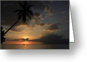 Oceans And Seas Greeting Cards - A Sailboat And Moorea Island Viewed Greeting Card by Stephen Alvarez