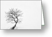 Barren Greeting Cards - A Simple Tree Greeting Card by David Bowman