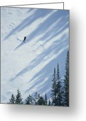 Utah Weather Greeting Cards - A Skier Glides Across A Pine-shadowed Greeting Card by James P. Blair