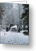 River Scenes Greeting Cards - A Snow-covered Footbridge Greeting Card by Marc Moritsch