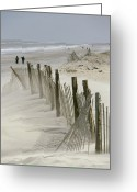 Wood Fences Greeting Cards - A Snow Fence Stretches Across A Dune Greeting Card by Skip Brown