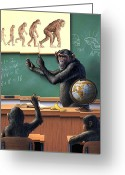 Chimpanzee Greeting Cards - A Specious Origin Greeting Card by Jerry LoFaro