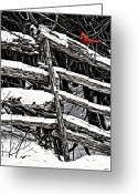 Cedar Fence Greeting Cards - A Splash of Color Greeting Card by Steve Harrington