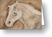 Remy Francis Greeting Cards - A Stallion Greeting Card by Remy Francis