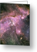 Hubble Greeting Cards - A Star-forming Region In The Small Greeting Card by Stocktrek Images
