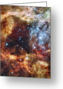 Interstellar Clouds Photo Greeting Cards - A Stellar Nursery Known As R136 Greeting Card by Stocktrek Images