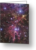 Starfield Greeting Cards - A Stellar Nursery Located Towards Greeting Card by R Jay GaBany