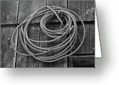 Suspicion Greeting Cards - A Study of Wire in Gray Greeting Card by Douglas Barnett