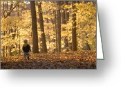 Autumn Photographs Greeting Cards - A Three Year Old Boy Walks Greeting Card by Skip Brown