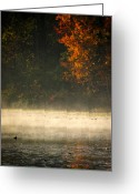 Mist Posters Greeting Cards Greeting Cards - A Touch of Mist Greeting Card by Steve Buckenberger