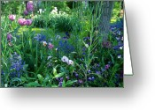 Featured Artwork Prints Greeting Cards - A Tranquil Garden Greeting Card by Kathy Yates