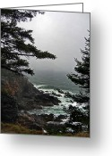 Surf Photos Art Greeting Cards - A Tricky Acadian Cove Greeting Card by Skip Willits