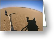 Ethnic And Tribal Peoples Greeting Cards - A Tuareg Tribesman Leads His Camel Greeting Card by Carsten Peter