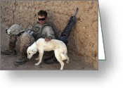 Taking A Break Greeting Cards - A U.s. Marine Pets A Dog While Taking Greeting Card by Stocktrek Images
