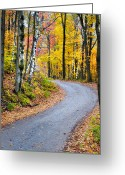 Scenic Byways Greeting Cards - A Vermont Country Road Greeting Card by Thomas Schoeller