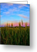 Purple Sky Greeting Cards - A View from Crop Level Greeting Card by Bill Tiepelman