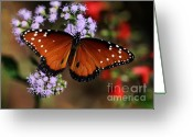 Gossamer Greeting Cards - A Visit from the Queen Greeting Card by Sabrina L Ryan